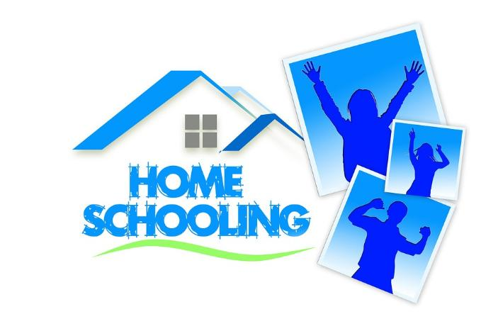 homeschooling în România, laclasă.ro